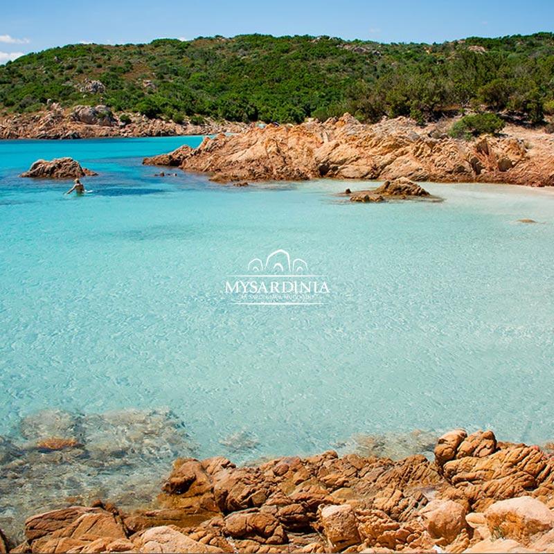 My Sardinia, il turismo russo in Sardegna