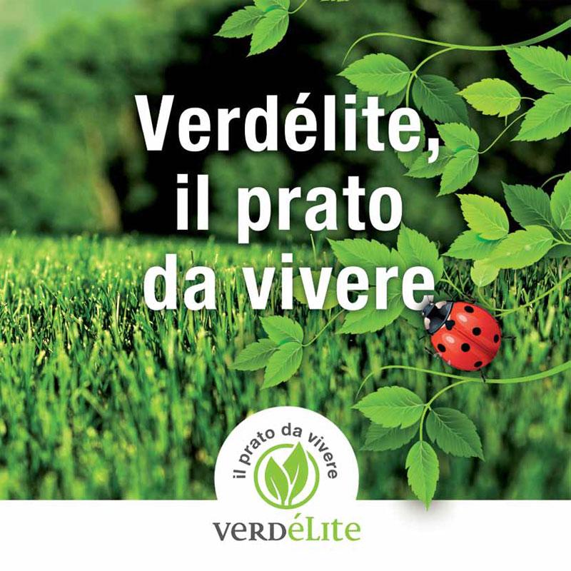 Verdélite, servizio esclusivo per un nuovo brand